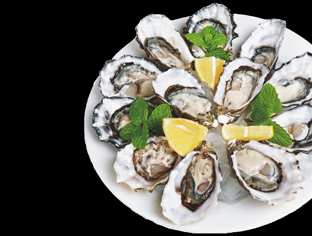 ristorante-di-pesce-fresco-pesce-pazzo-lugano.png